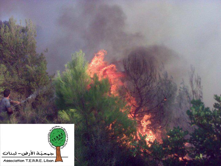 Incendies de forêt Baabda T.E.R.R.E.Liban