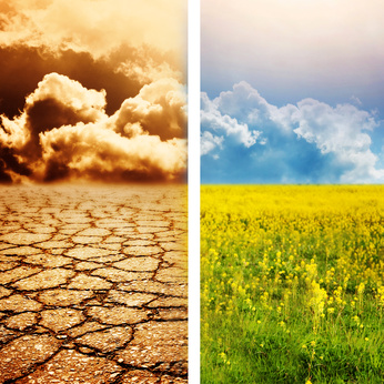 Editorial Journal Ecol'ogique - Changements Climatiques